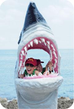 boys shark