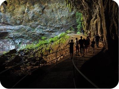 Rio Camuy Caves