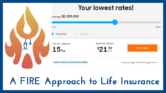 A FIRE-Minded Approach to Life Insurance