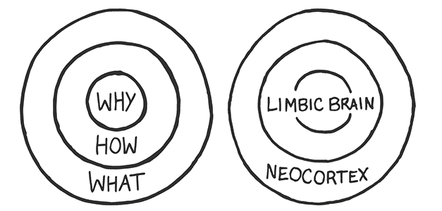 2-why-messaging-and-limbic-system