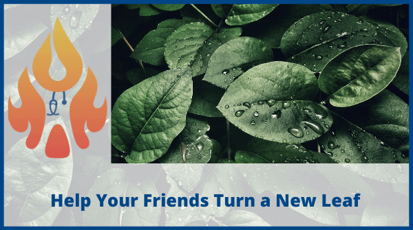 turn a new leaf
